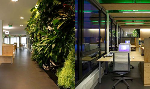 <p class='hname'> <a href='http://www.inc.com/ss/worlds-coolest-offices-2010/best-green-offices'>Foundation Nicolas Hulot</a> | <a href='http://www.inc.com/ss/worlds-coolest-offices-2010/best-green-offices'>Nicolas Favet Architectes</a> | Boulogne-Billancourt, France | Best Green Offices </p>